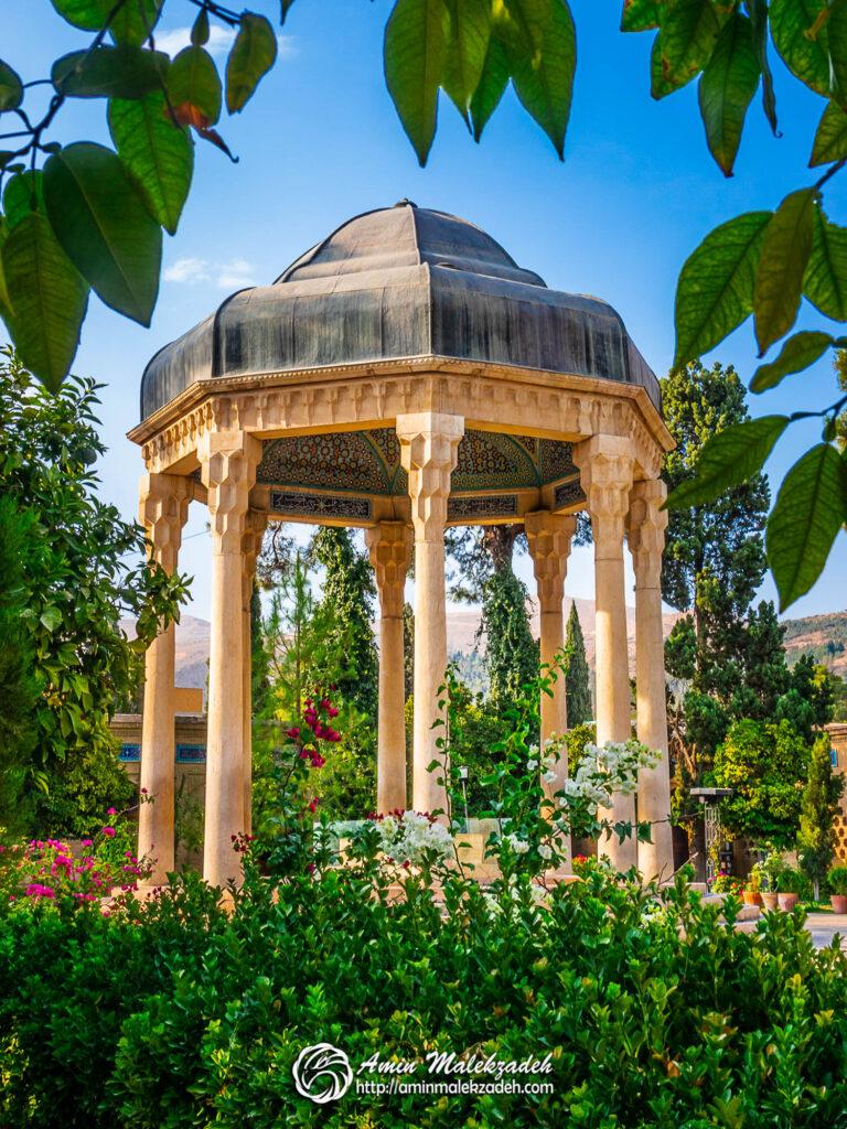 Hafez (2)